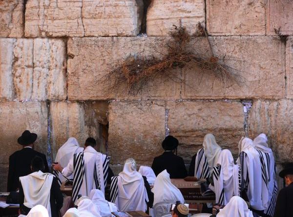 110817_1313589620_евреи молятся