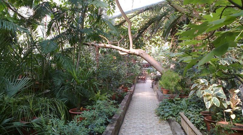 botanicheskiy-sad-institut-gorod-ufa